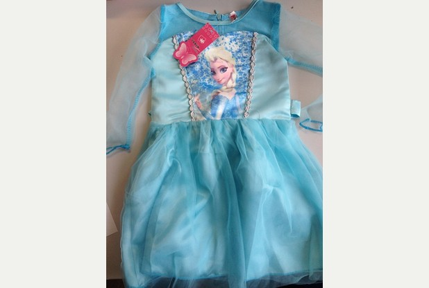 Fake Disney Frozen Elsa Costume seized in Devon