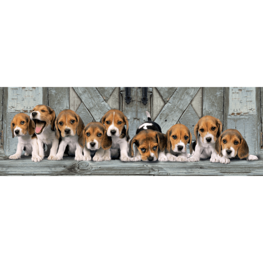 Picture of Clementoni Panorama Beagles Puzzle - 1000pcs